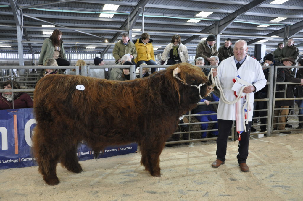 Alan Prentice of Ravenstruther, Lanarkshire, owner of the male Champion Eachan Ruadh of Hyndford