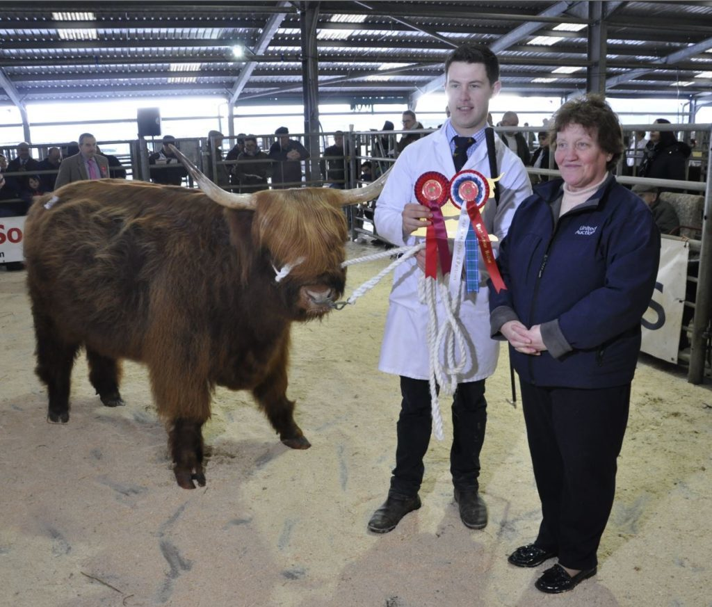Dexter Logan of Glengorm Estate, Tobermory, and Furan Magaidh 7th of Glengorm, is presented with the prize for Best Senior Heifer by United Auctions' pedigree administrator Margaret Owens-Smith
