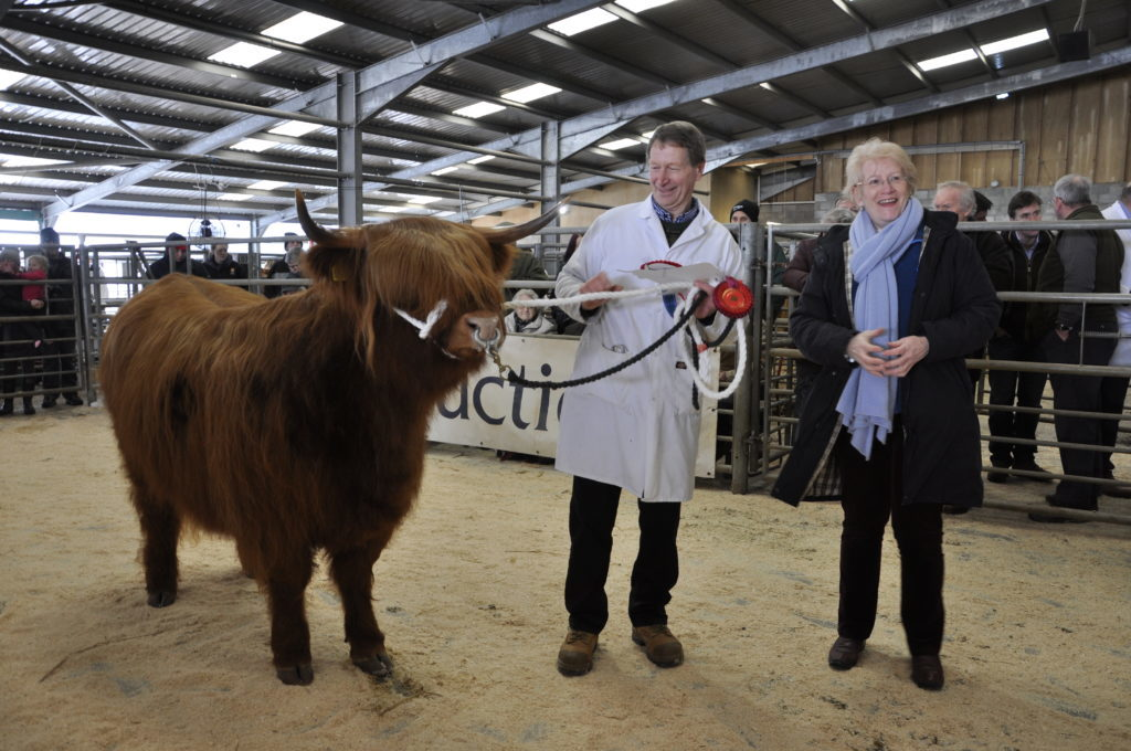 Ron MacLean and Una 4th of Corntown, Ross-shire, which won Best Two Year Old Heifer, presented by Kath McMahon of MacPhee & Partners
