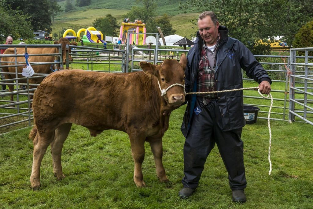 Winning the LSM Rosebowl for cattle were McDiarmid Bros, Ben Lawers.