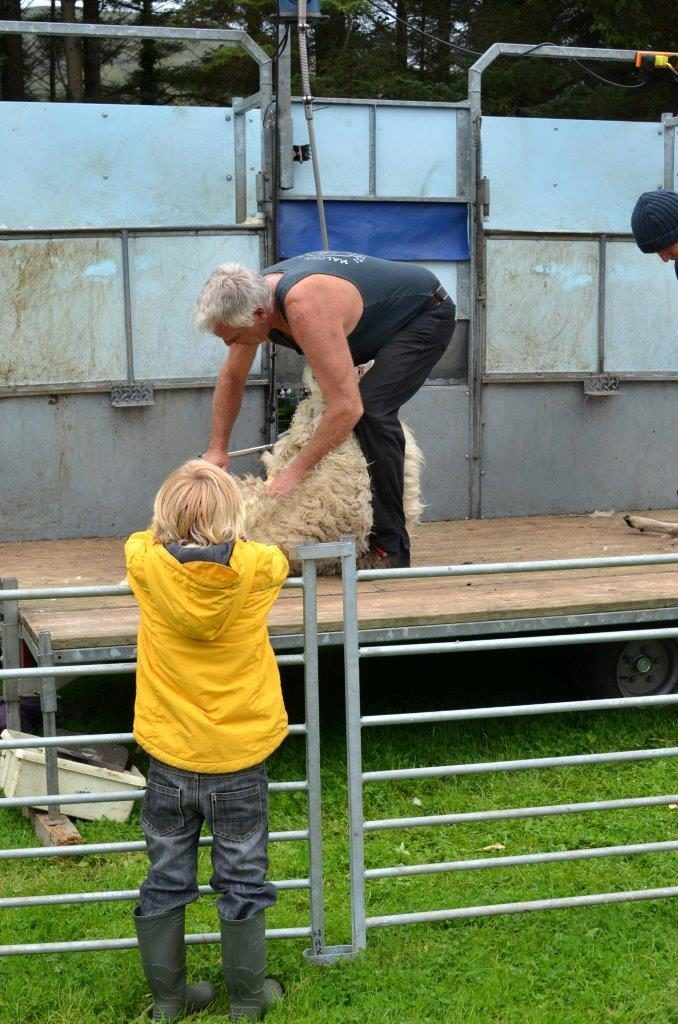 A shearer shows how it's done.