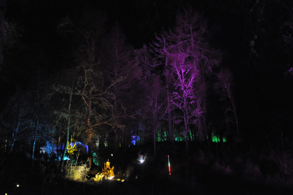 Glencruitten was transformed into an enchanted woodlands for the Winter Festival. 17_T48_WinterFestivaSaturday14