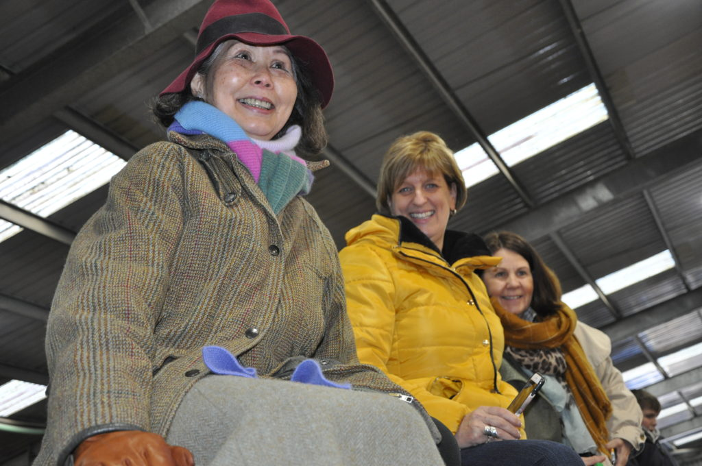 Highlanders enthusiasts take a perch to get a good view of Sunday's show ring at Oban Livestock Centre.