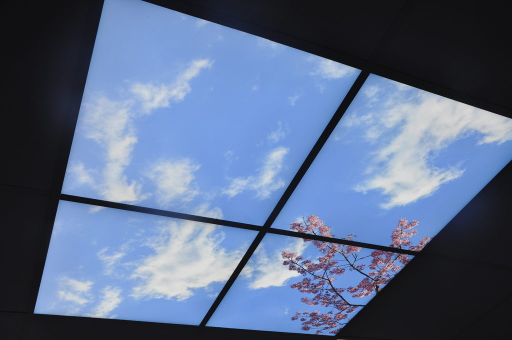 Room with a view, this ceiling light feature is to help  patients relax.