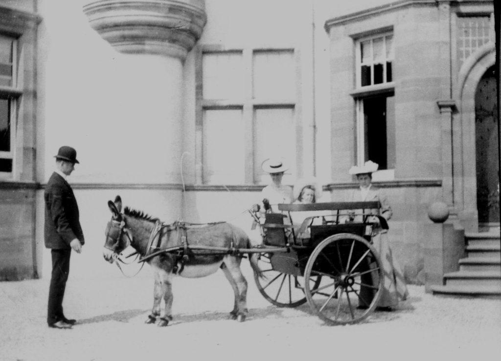 the Shielbridge House donkey cart. Photograph: Iain Thornber