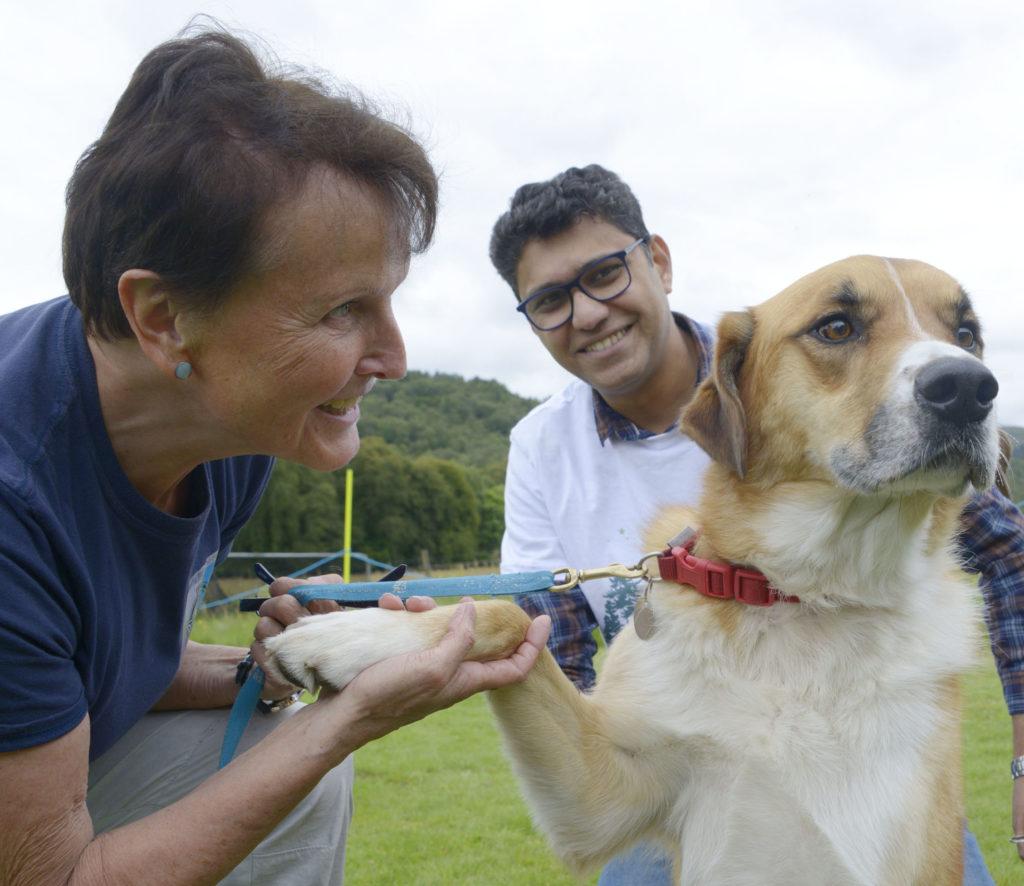 Harry, winner of 'the friendliest dog competition, allows organiser Ross Lyyn and judge Saket Gupta offer their congratulations. Photograph: Iain Ferguson, alba.photos