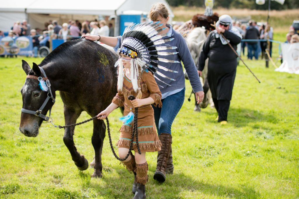 A scene from the fancy dress horse and pony competition.  NO F35 LAS 2019 - fancy dress horse and pony competition_
