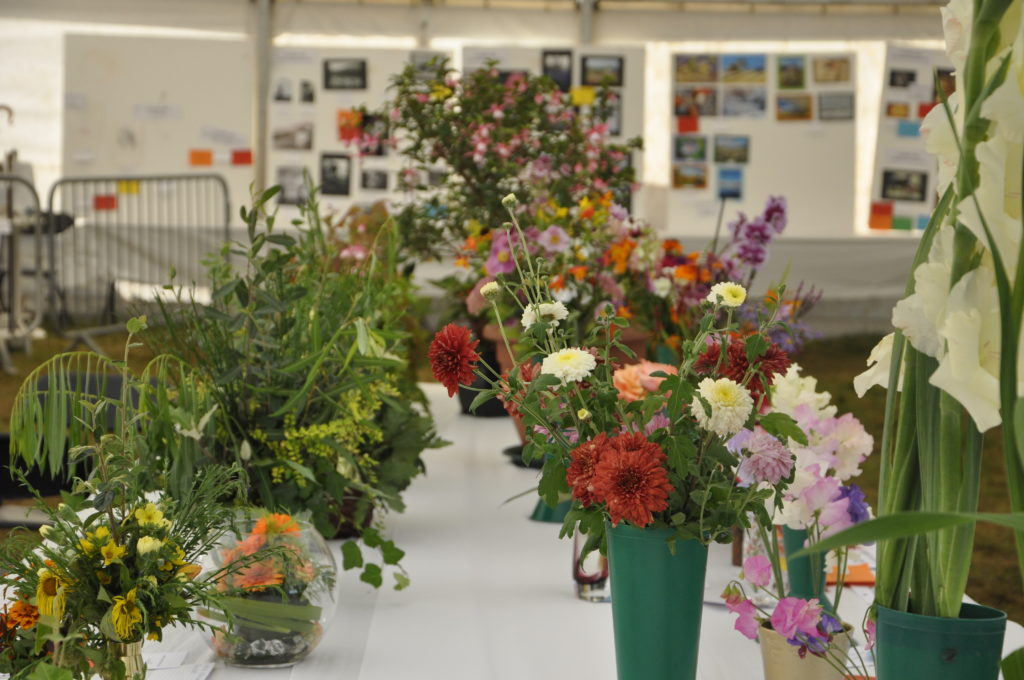 The horticultural entries were blooming marvelous.