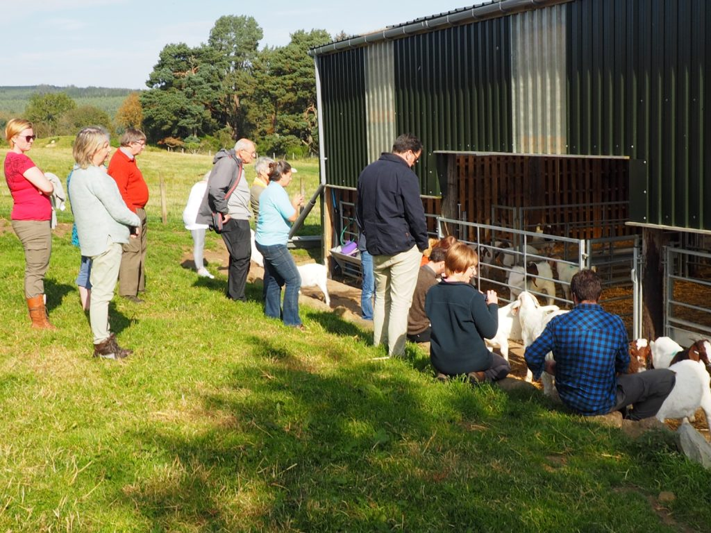 Attendees enjoyed antour of Elchies, Scotland's largest meat goat producer.
