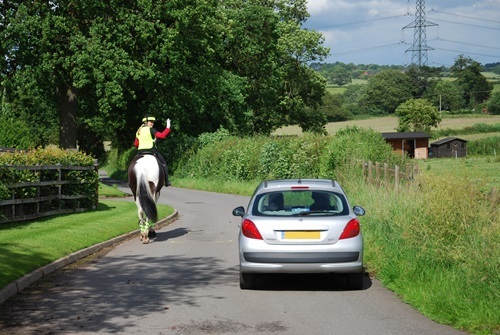 Increase in number of horse road incidents