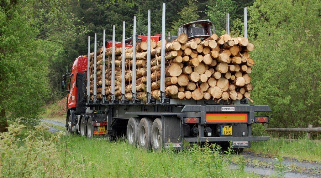 Multi-million boost for timber transport funding