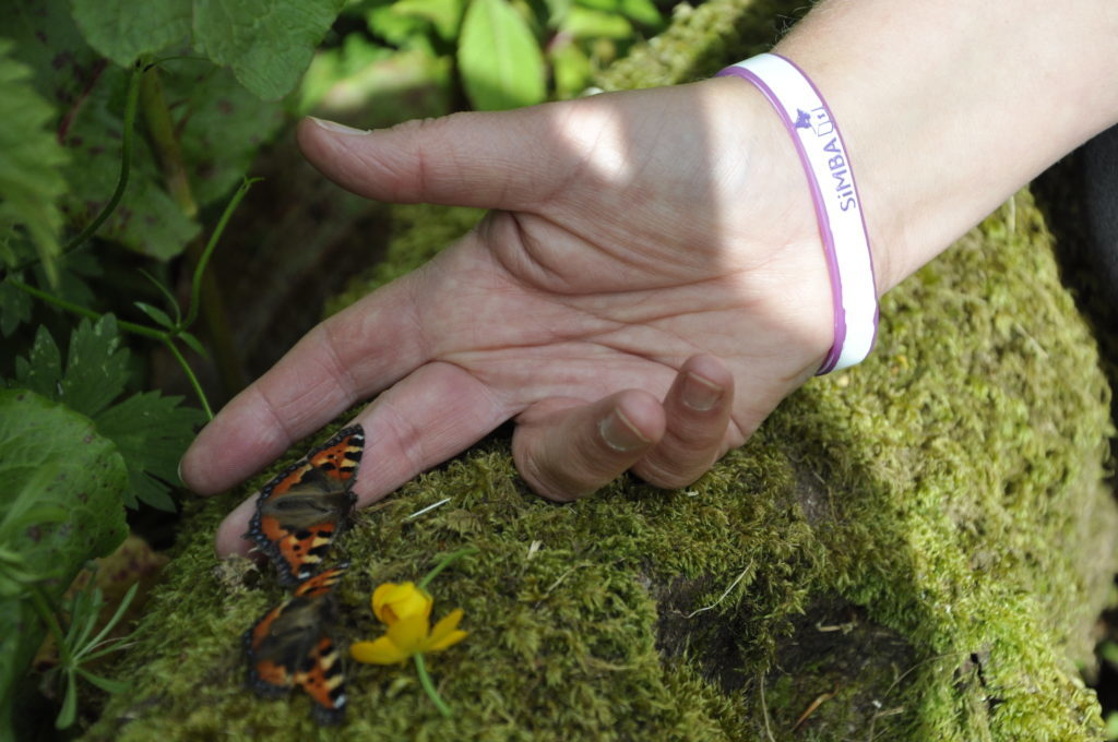 Families release butterflies in memory of babies who have died