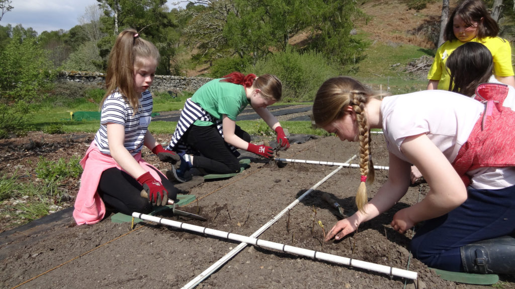 Kilchuimen Primary pupils dig in to nature
