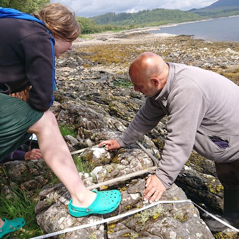 Citizen scientists survey Ardnamurchan seashore