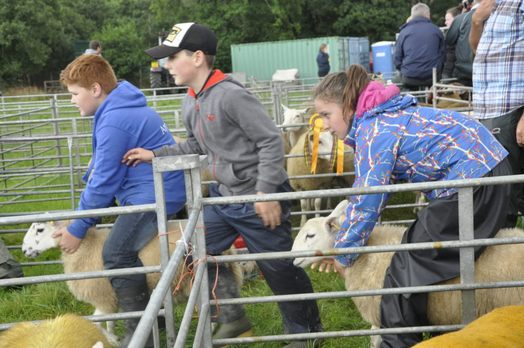 Appin Show ready for another bumper year