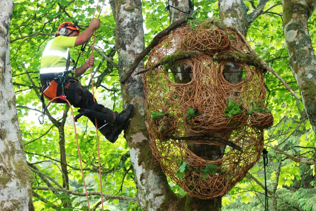 Mull has designs on community-owned forest play space