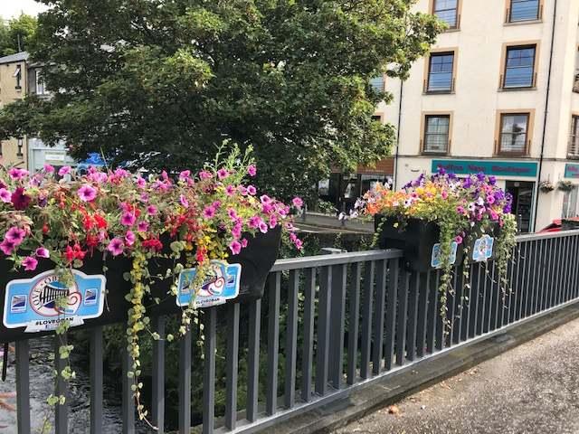 BID4Oban blasts 'mindless vandals'for wrecking flower basket